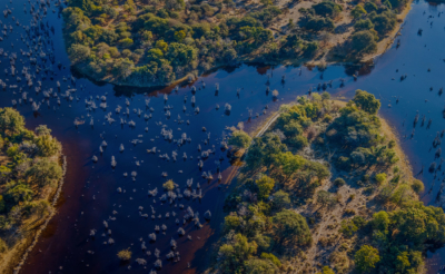 Botswana - East Africa Wild Luxury Safari Destination