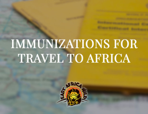 Immunizations for Travel to Africa