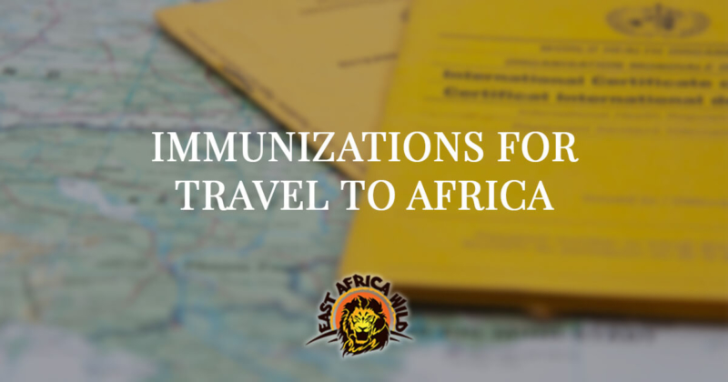 Required and recommended vaccinations for travel to Africa