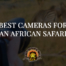 Best Cameras For An African Safari