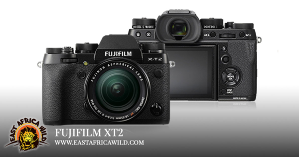 Best Camera for Safari Fujifilm XT2