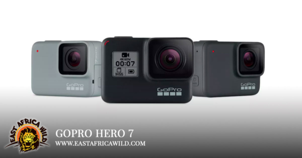 Best Camera for Safari: Gopro Hero 7